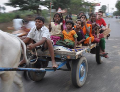 BullCart Ride